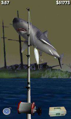 Free Download Big Sport Fishing 3D Paid APK Android Game