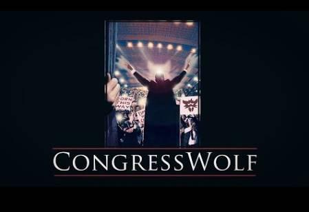 Kongresswolf