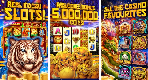 fafafa gold free slot machines casino APK Android