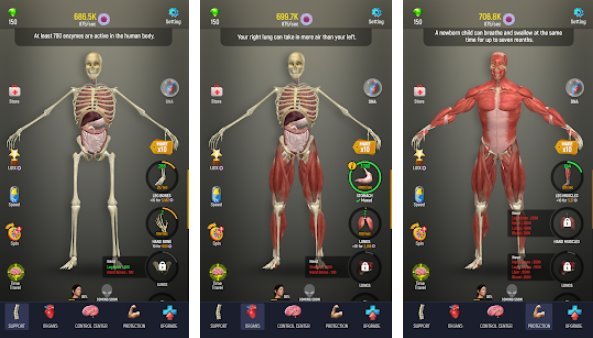 idle human APK Android