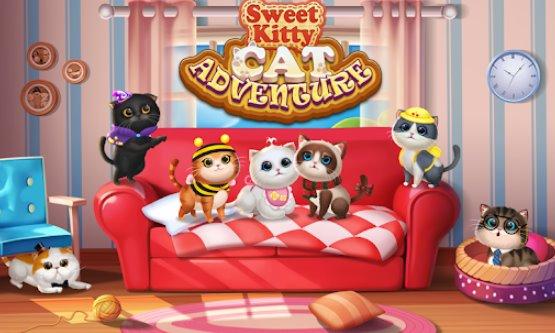chaton fête chat maison décorer