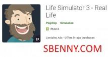 Simulatur tal-Ħajja 3 - Real Life + MOD