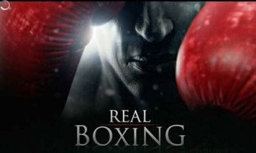 Real Boxing + MOD