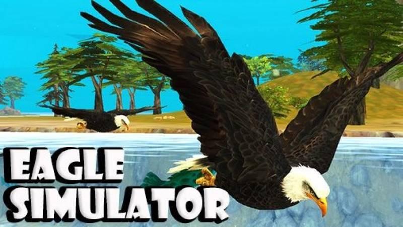 Aquila Simulator