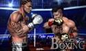 Punch Boxe 3D + MOD