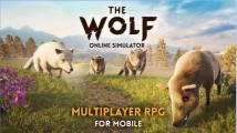 Wolf + MOD