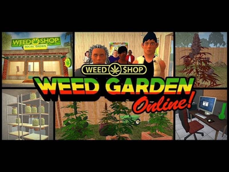 Weed Garden The Game + MOD