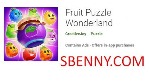 Fruit Puzzle Wonderland + MOD