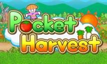 Pocket récolte