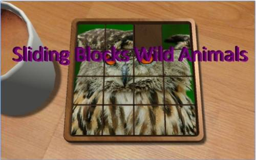Sliding Blocks Wild Animals