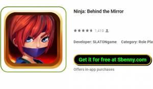 Ninja: Atrás do espelho + MOD