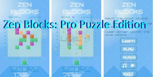Zen Blocks: Pro Puzzle Edition