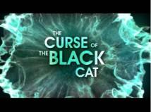 Воровский гамбит: Черный кот + MOD