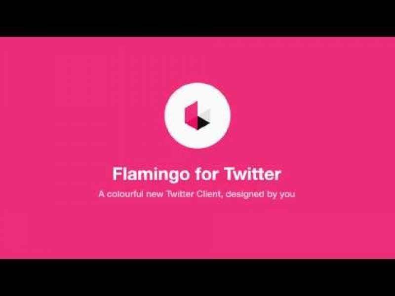 Flamingo für Twitter