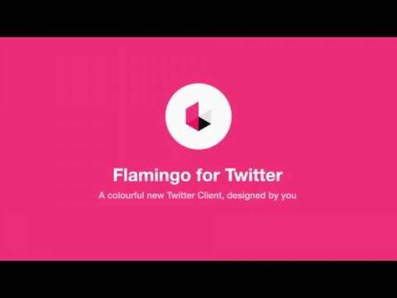 Flamingo per Twitter