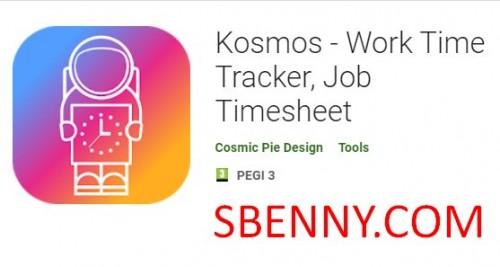 Kosmos - Tracker del tempo di lavoro, scheda attività