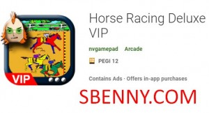 Pferderennen Deluxe VIP