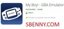 Mon garçon! - Emulateur GBA