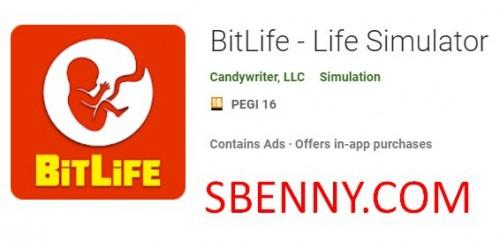 BitLife - زندگی شبیه ساز + MOD