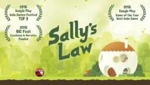 Lei de Sally