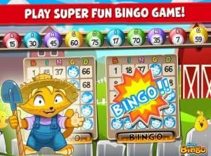 Bingo + MOD